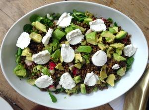 linzen salade met avocadoDSC02783